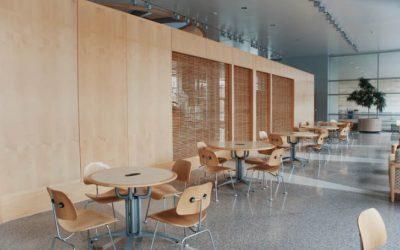 Qual a melhor solução para se livrar do Cupim de madeira seca em móveis?