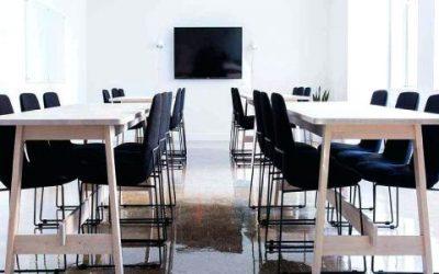 Dedetização de Empresa: Quais as Pragas Mais Controladas?
