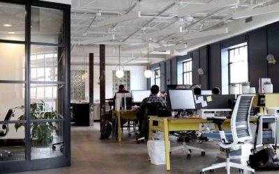 Dedetização de Empresa: Quando é Obrigatório?