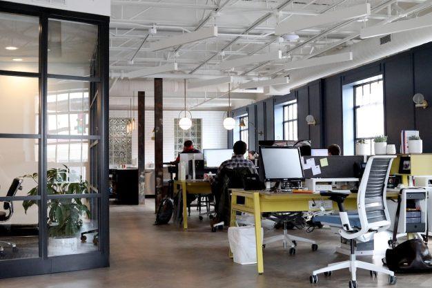 Descubra o Método Mais Eficiente para a Dedetização de Empresa