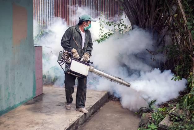Empresa de controle de pragas em Joinville | Joinville