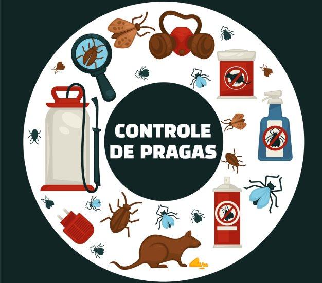 Empresa de controle de pragas saiba como escolher! | Joinville