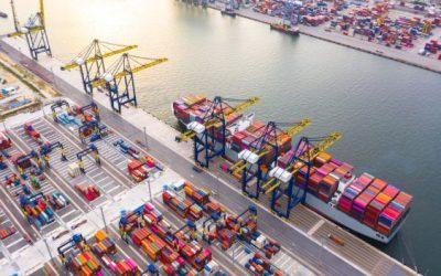 Controle de Pragas em Portos: como optar por uma empresa parceira sem errar?
